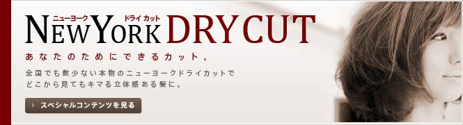 NEWYORK DRY CUT(ニューヨークドライカット)